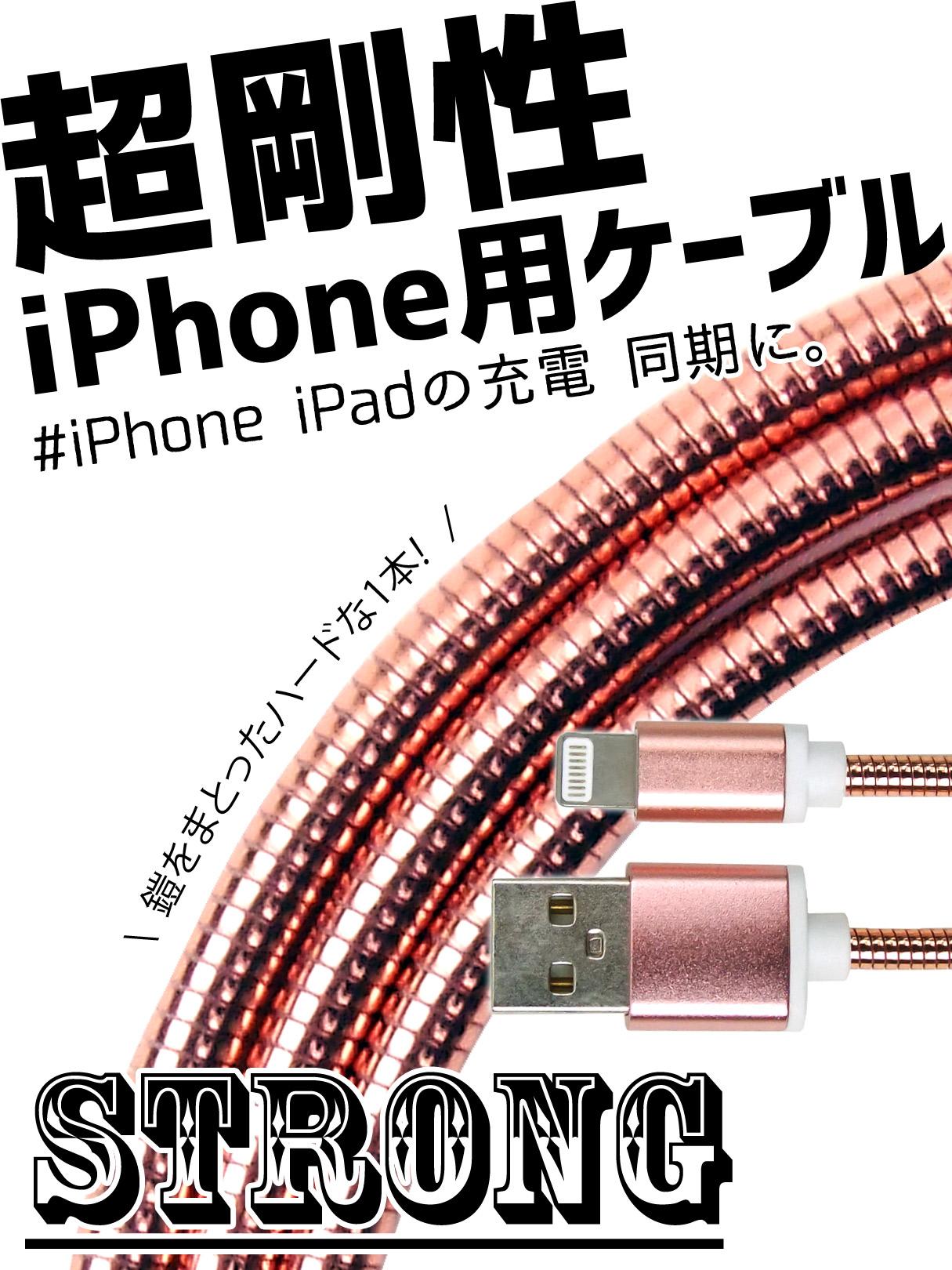 Apple端末ケーブル